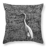 Egret In Black And White Throw Pillow