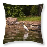 Egret In Central Park Throw Pillow