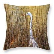 Egret In The Grass Throw Pillow