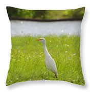 Egret On The Green-no2 Throw Pillow
