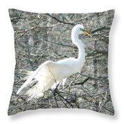 Egret Lake Martin Louisiana Rookery Throw Pillow