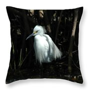 Egret Of Sanibel 2 Throw Pillow