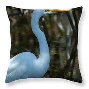 Egret Of Sanibel 3 Throw Pillow
