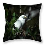 Egret Of Sanibel 5 Throw Pillow