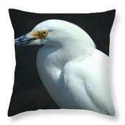 Egret Of Sanibel 7 Throw Pillow