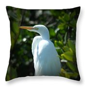 Egret Of Sanibel 9 Throw Pillow
