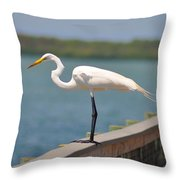 Egret On A Pier Throw Pillow