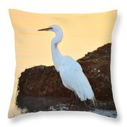 Egret On Dunedin Causeway Throw Pillow