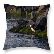 Egret On The Rocks Throw Pillow