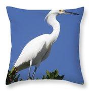 Egret Outlook Throw Pillow