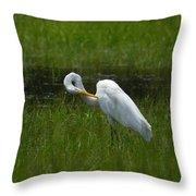 Egret Preen Throw Pillow