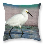 Egret Reflections- 2  Throw Pillow
