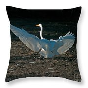 Egret Showing Off Throw Pillow