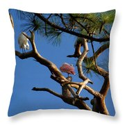 Egret Spoonbill And Stork Throw Pillow