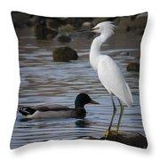 Egret Standing Guard Throw Pillow
