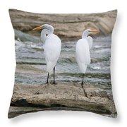 Egrets 4649 Throw Pillow