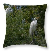 Egrets In Tree Throw Pillow