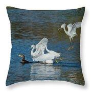 Egrets Robbing A Cormorant Throw Pillow