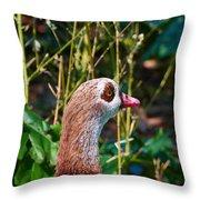 Egyptian Goose Throw Pillow