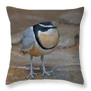 Egyptian Plover Throw Pillow