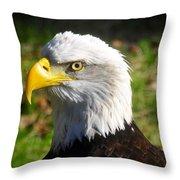 Bald Eagle Head Shot One Throw Pillow