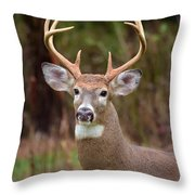 Eight Points Of Awesome Throw Pillow by Lori Tambakis