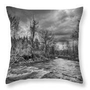 Eighteenmile Creek 1835b Throw Pillow