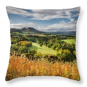 Eildon Hills In Autumn Throw Pillow