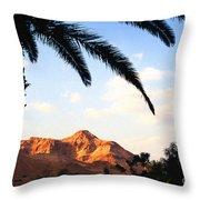 Ein Gedi Oasis Israel Throw Pillow