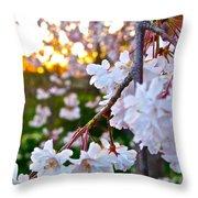 Einstein's Blossoms Throw Pillow