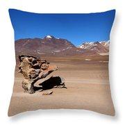 El Arbol De Piedra Bolivia Throw Pillow