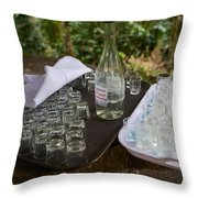 El Trapiche Moonshine Throw Pillow