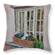 Elayne Look Through The Window Throw Pillow