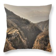 Electric Central Throw Pillow