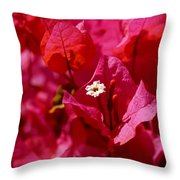 Electric Pink Bougainvillea Throw Pillow