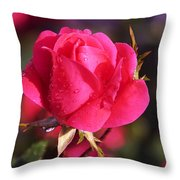 Electron Tea Rose Throw Pillow
