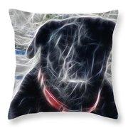 Electrostatic Black Lab Throw Pillow