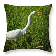 Elegant Hunter Throw Pillow