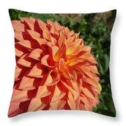 Elegant In Orange Throw Pillow