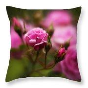 Elegant Pink Throw Pillow
