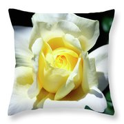 Elegant Rose Palm Springs Throw Pillow