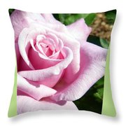 Elegant Royal Kate Rose Throw Pillow by Will Borden
