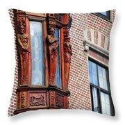 Elegant Window In Bergen Throw Pillow