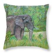 Elephant At Kruger Throw Pillow