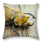 Elephant Beetle Throw Pillow by Aged Pixel