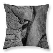 Elephant Bw Throw Pillow
