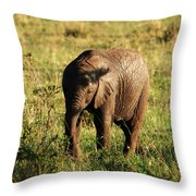 Elephant Calf Throw Pillow