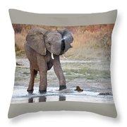 Elephant Calf Spraying Water Throw Pillow