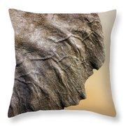 Elephant Ear Close-up Throw Pillow