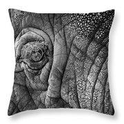 Elephant Eye Throw Pillow